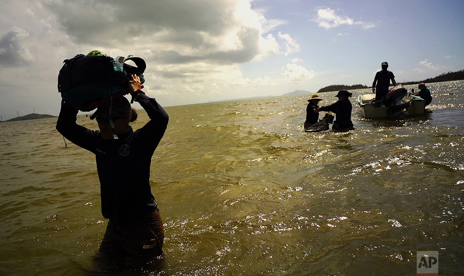 In this screen grab made from video on Wednesday, Oct. 4, 2017, scientists return to land from Cayo Santiago, known as Monkey Island, in Puerto Rico, one of the world's most important sites for research into how primates think, socialize and evolve. (AP Photo/Ramon Espinosa)