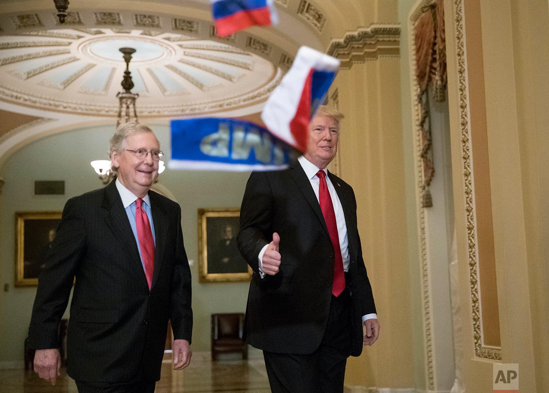 Trump Senate