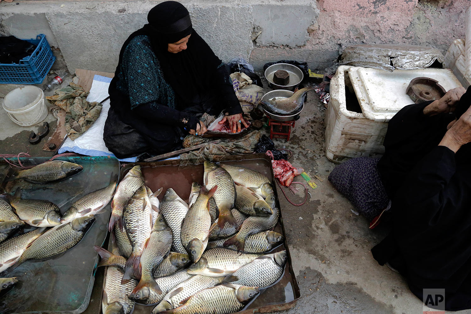 In this Sept. 11, 2017 photo, women gut and sell fish at a market in central Chabaish, Iraq. In the largely agrarian society in Iraq's vast wetlands, women make up a sizeable proportion of the workforce, fishing, raising buffalo and selling in local markets. (AP Photo/Susannah George)