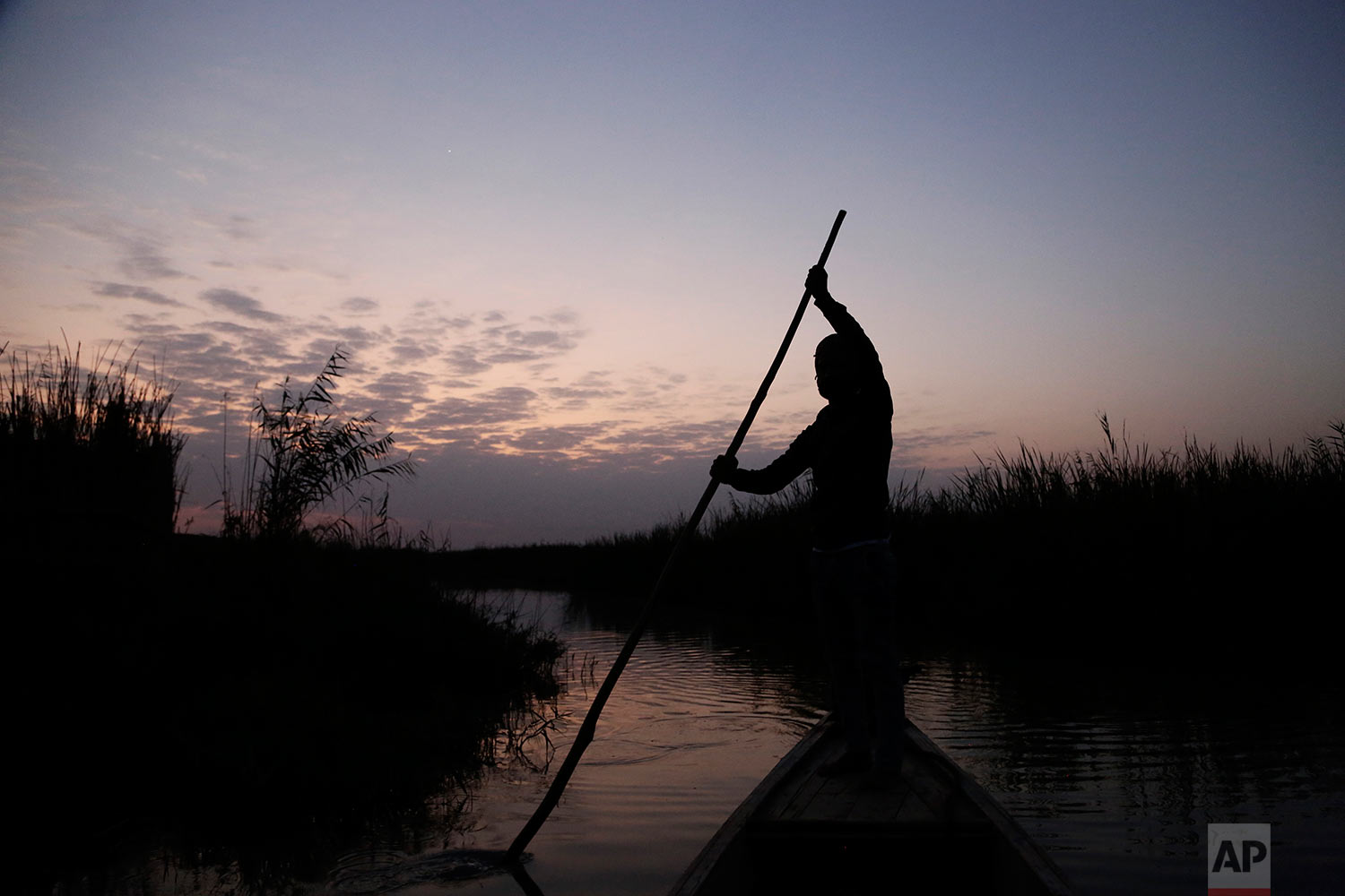 In this Sept. 11, 2017 photo, a fisherman paddles through Iraq's southern marshes at dawn in Chabaish, Iraq. The wetlands are the largest in the Middle East and after surviving bombings and draining at the hands of former leader Saddam Hussein, the fragile ecosystem is imperiled again, by government mismanagement and new upstream projects. (AP Photo/Susannah George)