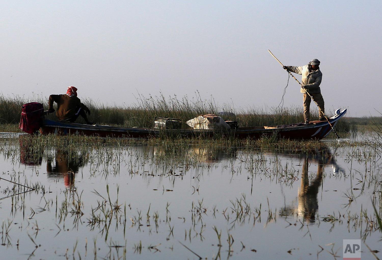 Fishermen fish in the Chabaish marsh in the Maysan province of southern Iraq, Saturday, Jan. 7, 2017. (AP Photo/ Nabil al-Jurani)