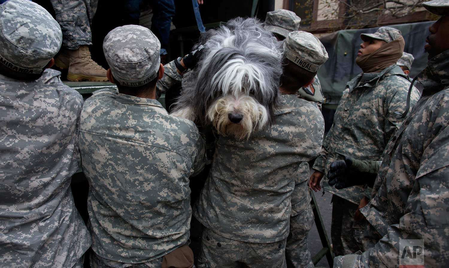 A dog named Shaggy is handed from a National Guard truck to National Guard personnel after the dog and his owner left a flooded building in Hoboken, N.J., Wednesday, Oct. 31, 2012, in the wake of superstorm Sandy. Some residents and pets are being plucked from their homes by large trucks as parts of the city are still covered in standing water. (AP Photo/Craig Ruttle)