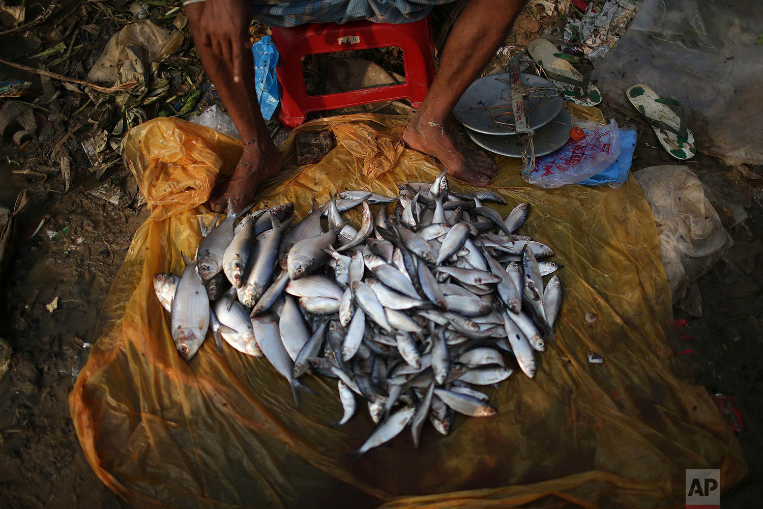 "A Rohingya man sells fish on the muddy grounds of Thaingkhali refugee camp on Wednesday, Nov. 22, 2017, in Bangladesh. Since late August, more than 620,000 Rohingya have fled Myanmar's Rakhine state into neighboring Bangladesh, seeking safety from what the military described as ""clearance operations."" The United Nations and others have said the military's actions appeared to be a campaign of ""ethnic cleansing,"" using acts of violence and intimidation and burning down homes to force the Rohingya to leave their communities. (AP Photo/Wong Maye-E)"