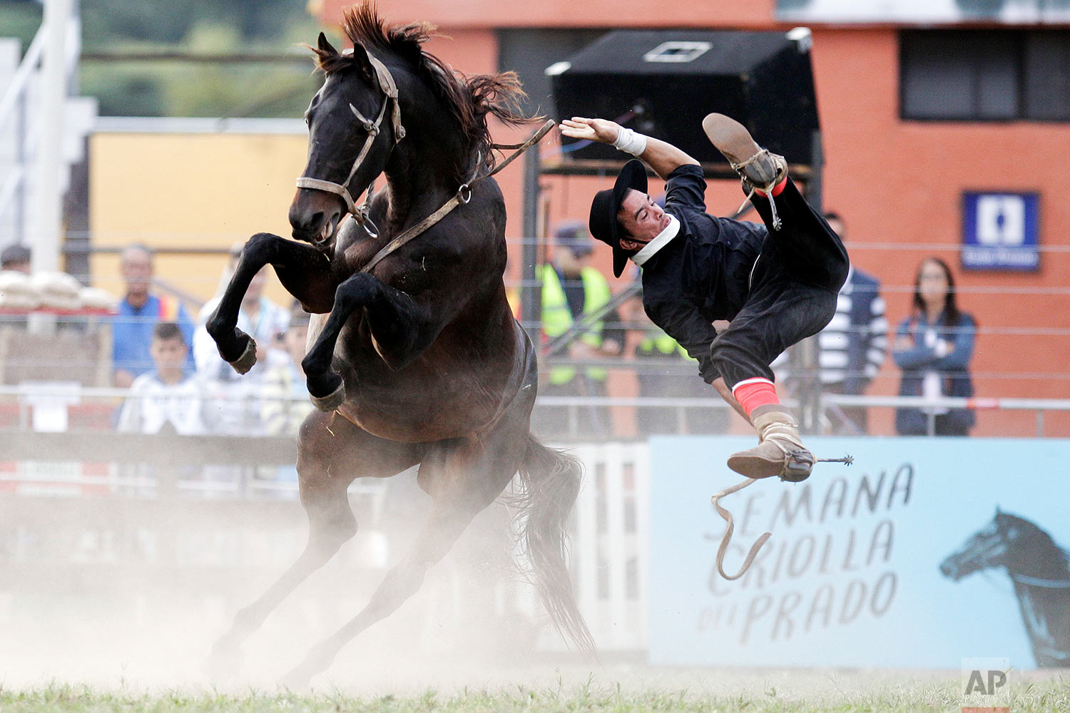 A gaucho is thrown off a wild horse during the Criolla del Prado rodeo in Montevideo, Uruguay, Wednesday, April 12, 2017. During holy week the city of Montevideo organizes the rodeo to reward the best horse riders. (AP Photo/Matilde Campodonico)