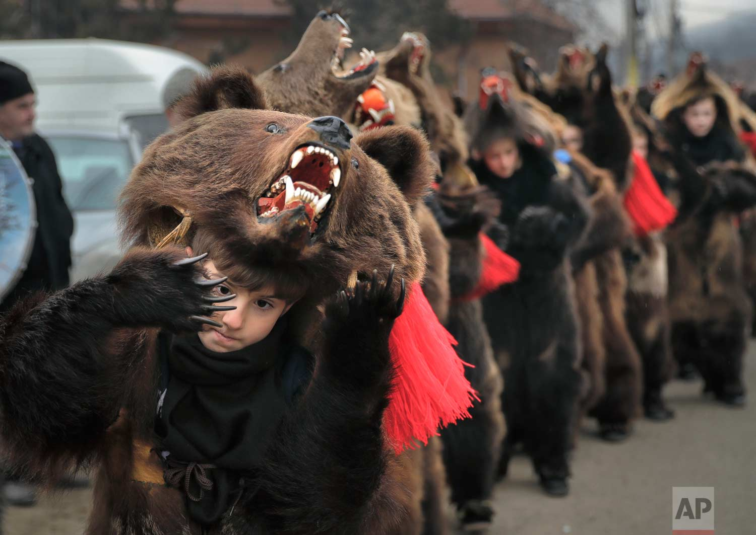 In this Saturday, Dec. 30, 2017, picture Tudor Huluta, an 8-year-old, who returned from Britain to attend the parade, wears a bear fur costume while dancing in Asau, Romania. (AP Photo/Vadim Ghirda)