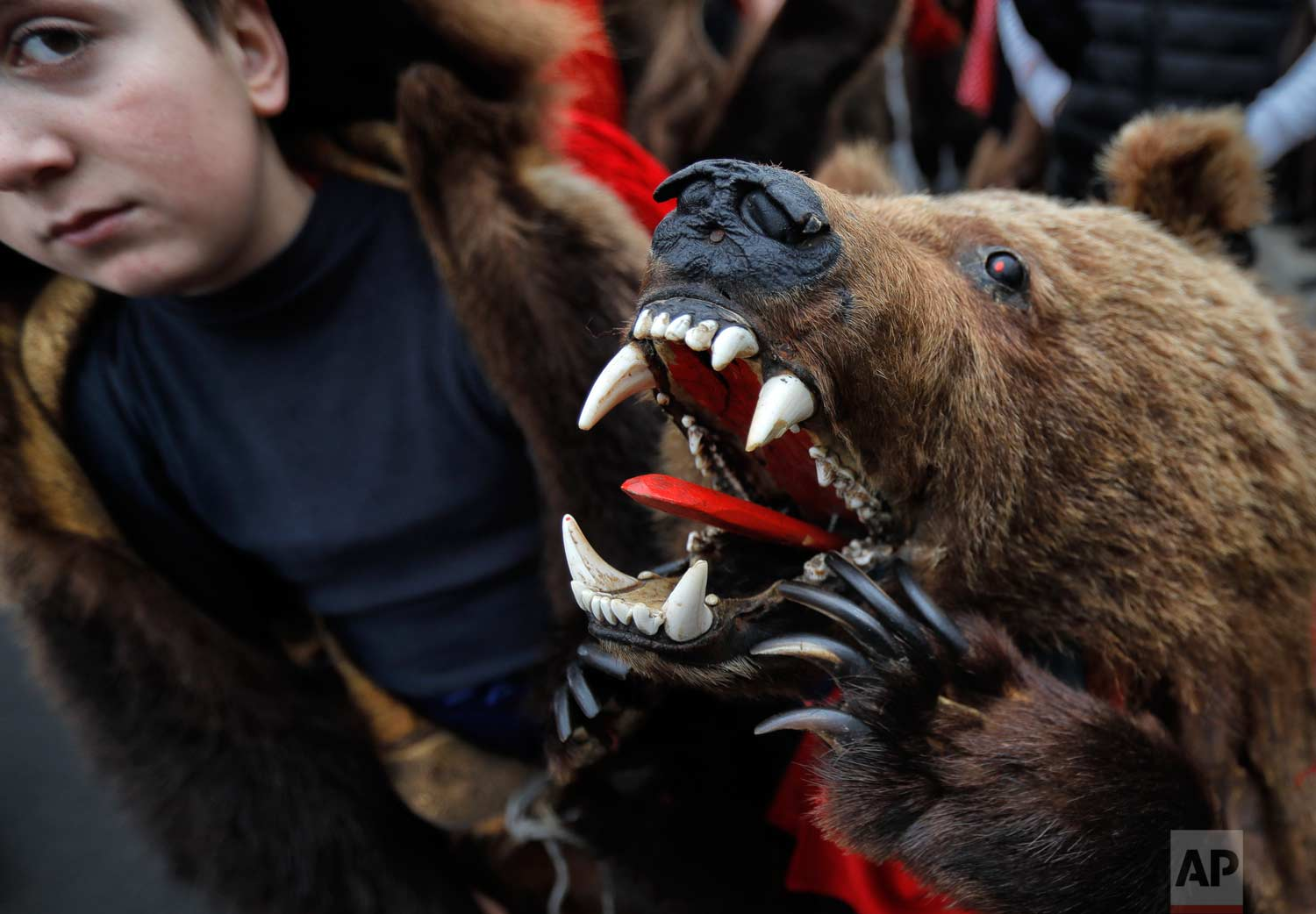 In this Saturday, Dec. 30, 2017, picture children wearing a bear fur costumes pause during an annual bear parade in Comanesti, Romania. (AP Photo/Vadim Ghirda)