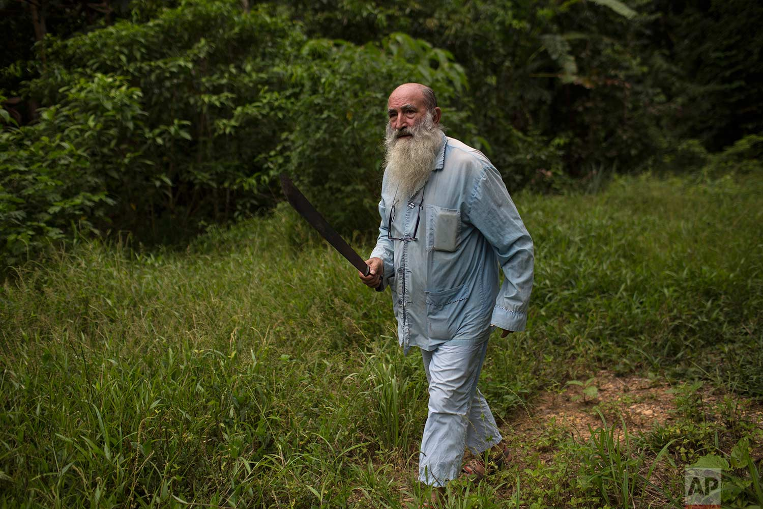 In this Jan. 6, 2018 photo, Father Pablo Zabala, better known as Padre Pablo, wields his machete while harvesting bananas on land owned by the Catholic Church in Boca Colorado, part of Peru's Madre de Dios region in the Amazon. Zabala, 70, has lived in the Amazon for 24 years and spent the last 10 running a Catholic parish that works with about two dozen mining camps. (AP Photo/Rodrigo Abd) |  See these photos on AP Images