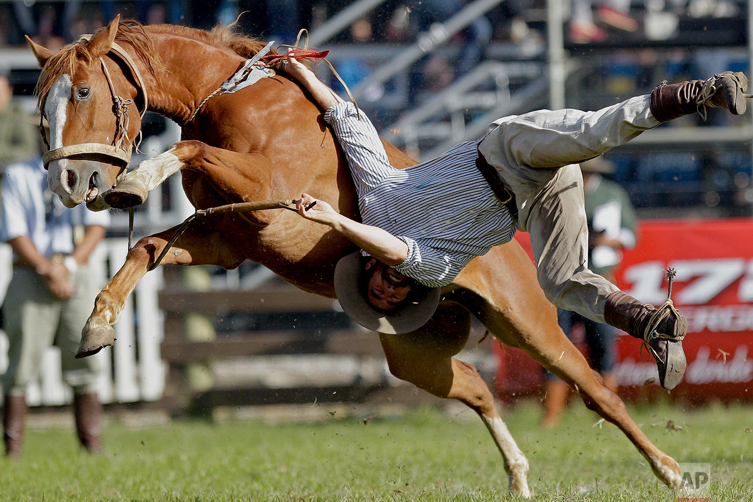 "A gaucho is thrown off a wild horse during the ""Criolla del Prado"" rodeo during Easter Week in Montevideo, Uruguay, March 25, 2018. The traditional ""jineteadas"" have been a popular Holy Week tradition since 1925, and were named a national sport by Uruguayan lawmakers in 2006. (AP Photo/Matilde Campodonico)"