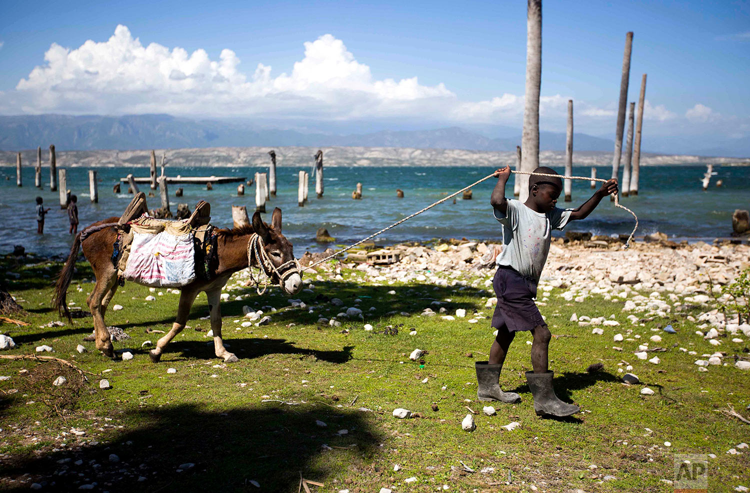 In this April 20, 2018 photo, a youth pulls a donkey carrying a one gallon bag of water he fetched from Lake Azuei in Fond Parisien, Haiti. Behind are homes that were flooded from rising water levels brought by heavy rain. (AP Photo/Dieu Nalio Chery)