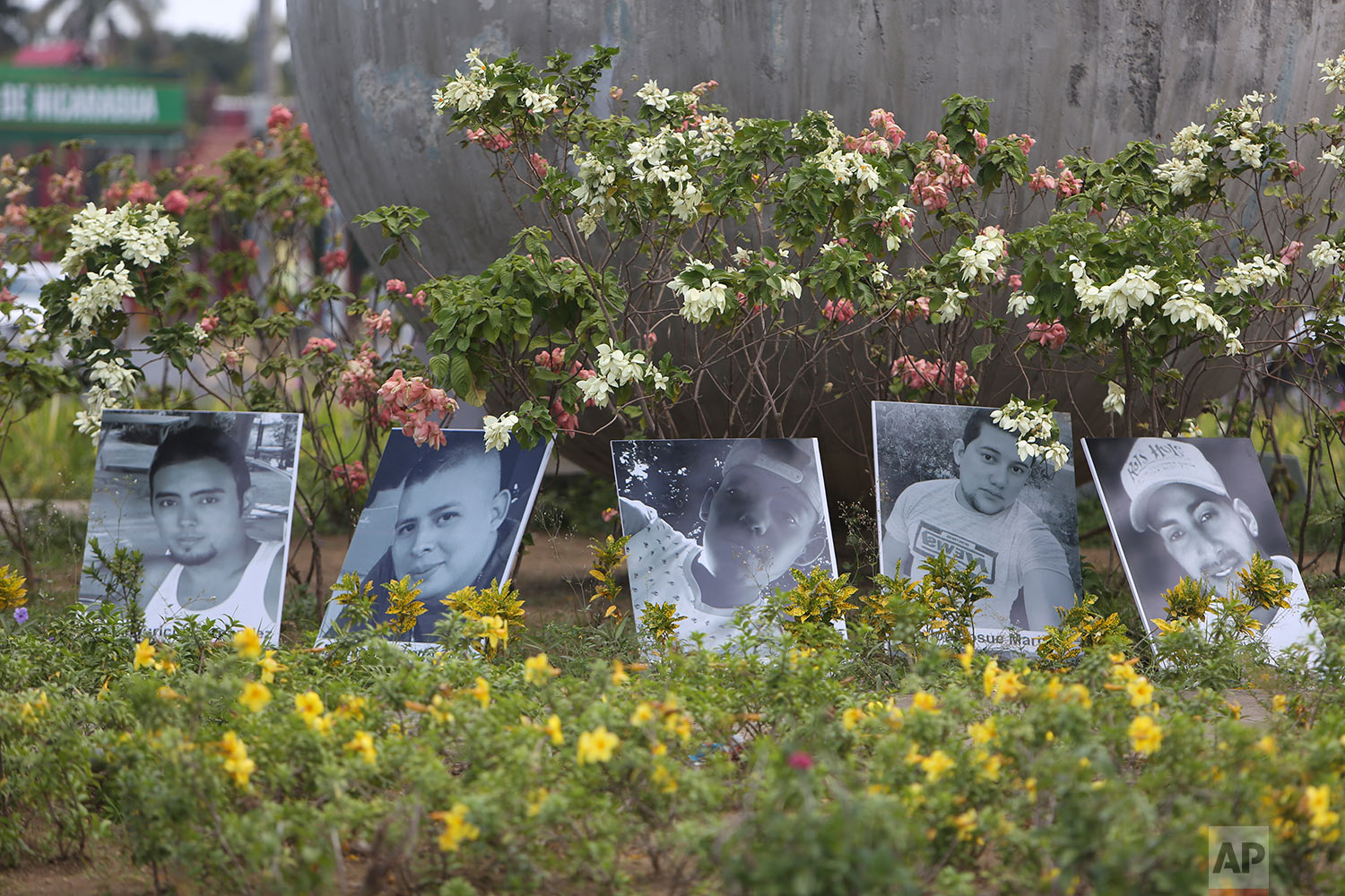 Photos of the dead are displayed in a roundabout In Managua, Nicaragua, Tuesday, April 24, 2018. Human rights groups say clashes between police and protesters left nearly 30 dead since people took to the streets last week to oppose tax hikes and benefit cuts meant to shore up the ailing social security system. (AP Photo/Alfredo Zuniga)