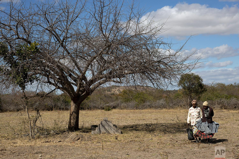 Ellis Ndlovu, 91, walks in Simbumbumbu, Zimbabwe, past the grave of her son Edwel. (AP Photo/Jerome Delay)