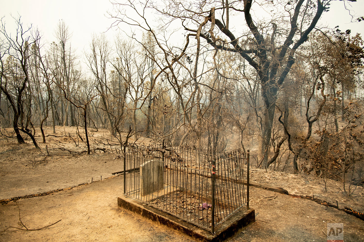 The historic Pioneer Baby's Grave rests among trees scorched by the Carr Fire in Shasta, Calif., on Friday, July 27, 2018. The fire rapidly expanded Thursday when erratic flames swept through the historic Gold Rush town of Shasta and nearby Keswick, then cast the Sacramento River in an orange glow as they jumped the banks into Redding. (AP Photo/Noah Berger)
