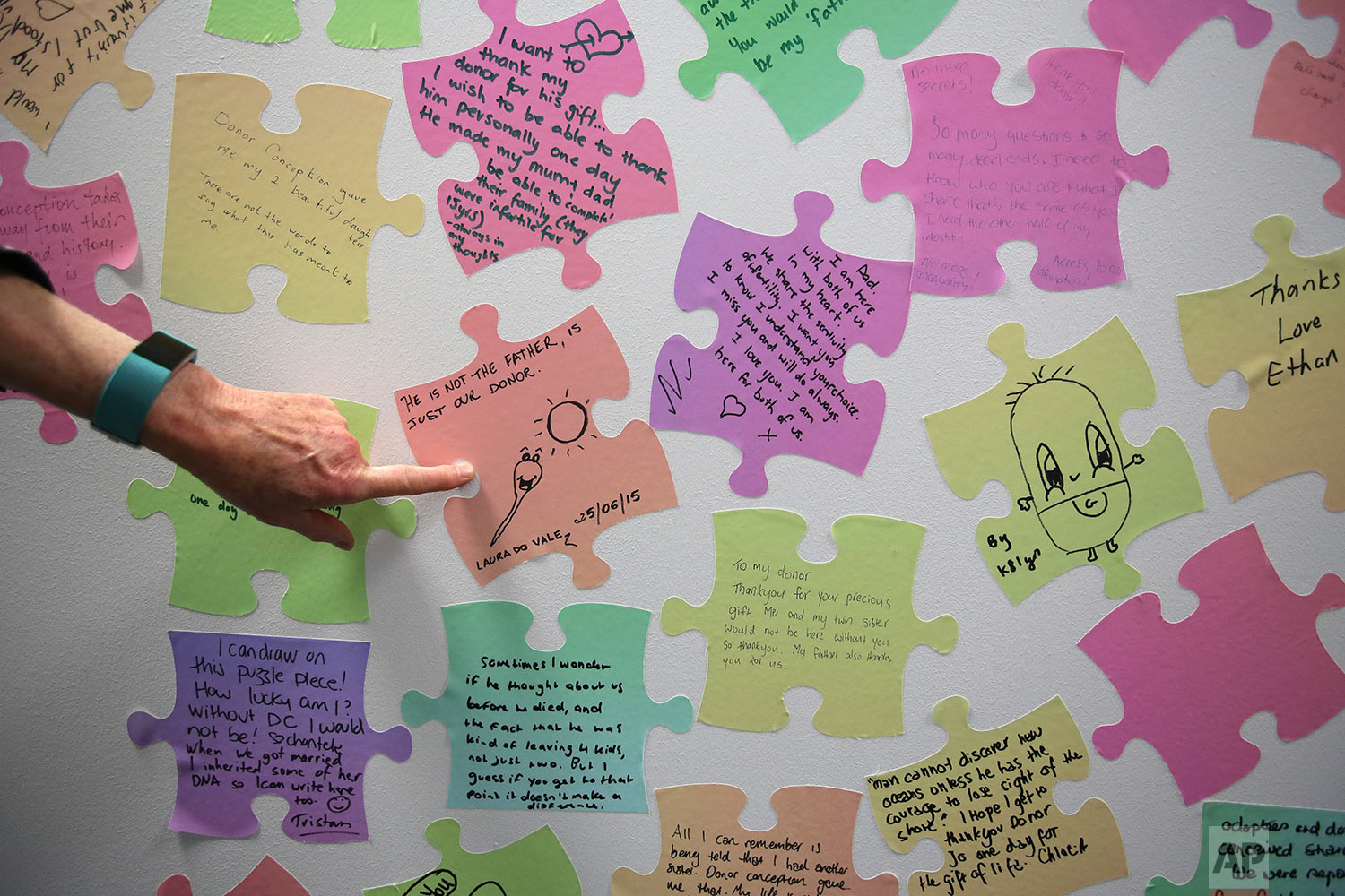 Louise Johnson, CEO of VARTA, points to a series of jigsaw puzzle-shaped stickers featuring messages written by people who were conceived as a result of sperm or egg donation. (AP Photo/Wong Maye-E)