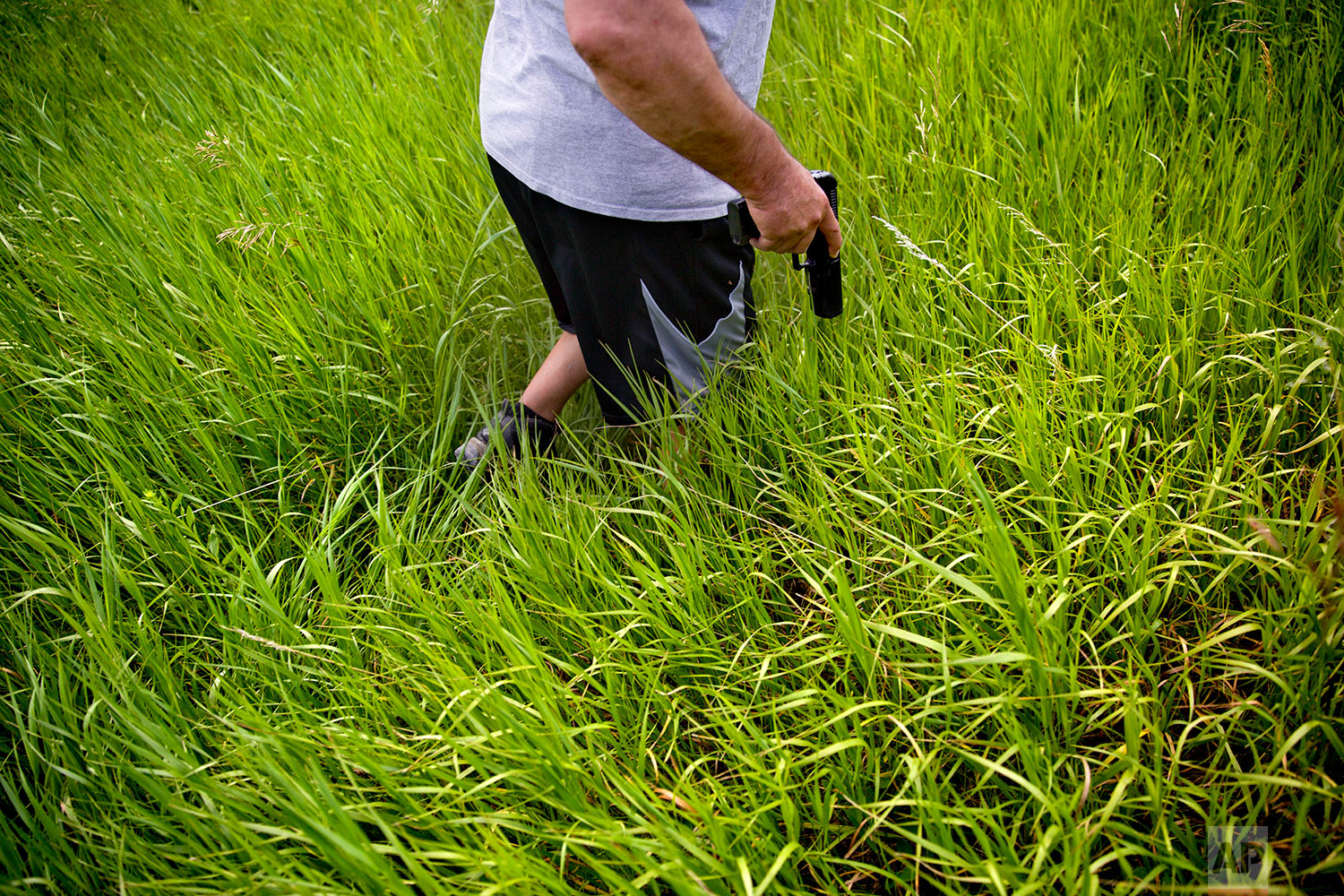 George A. Hall draws his pistol as grizzly bears are heard nearby during a search in Valier, Mont., for Ashley HeavyRunner Loring, July 11, 2018. (AP Photo/David Goldman)