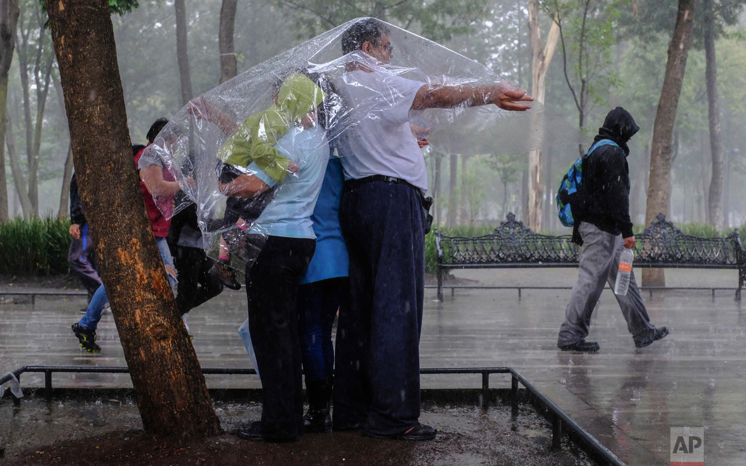 Fernando Rodriguez Garcia covers his family with a plastic sheet during a sudden downpour as he and his family take a walk through Alameda park in Mexico City, Aug. 12, 2018. (AP Photo/Anthony Vazquez)