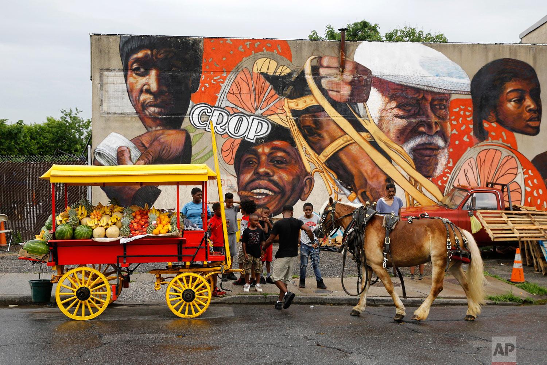 Boys watch as arabber Bilal Yusuf Abdullah prepares his horse-drawn cart full of produce on June 20, 2018, outside a stable in Baltimore. (AP Photo/Patrick Semansky)