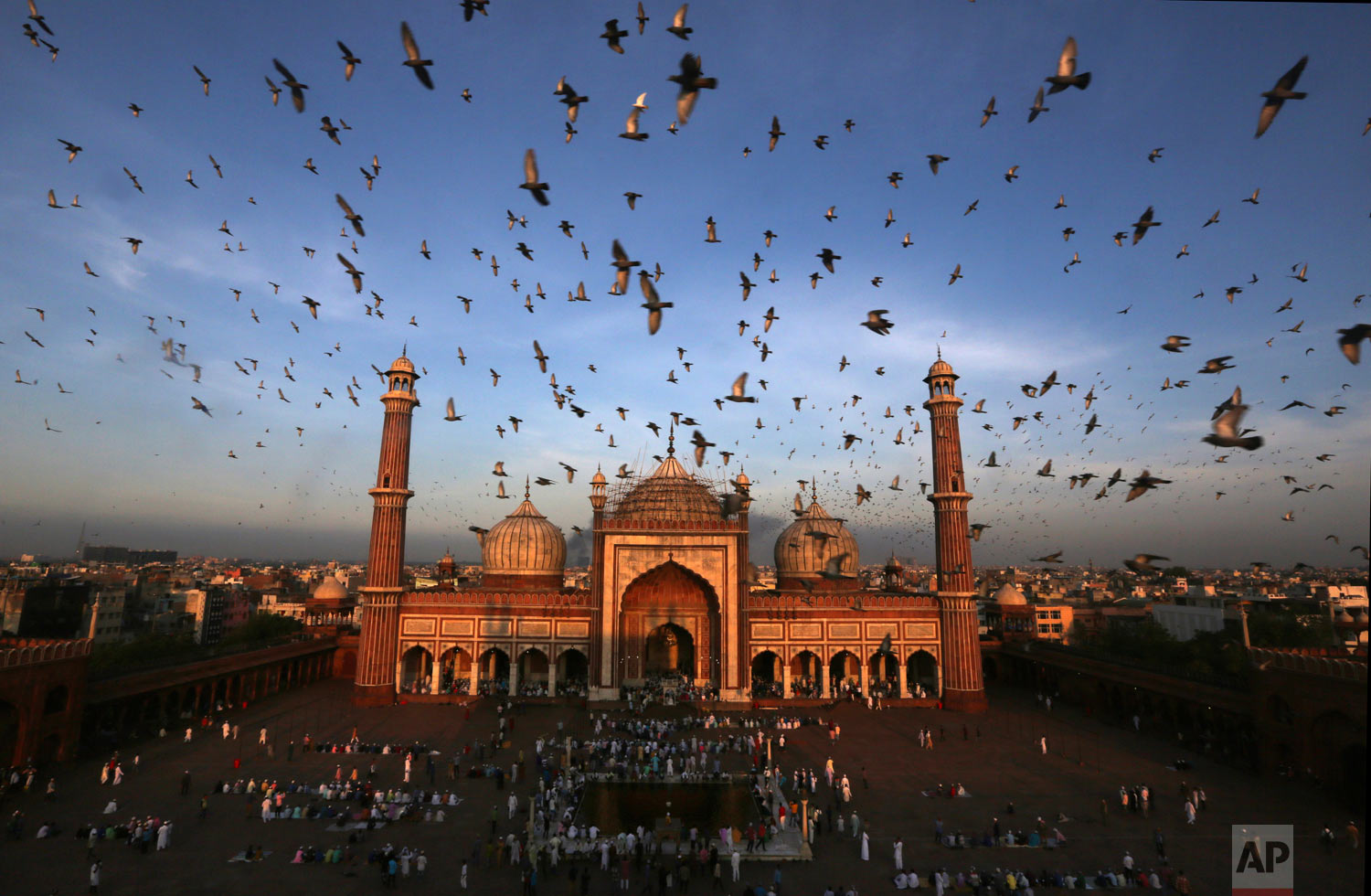 Pigeons fly past as Muslims gather to offer Eid al-Adha prayers at Jama Masjid in New Delhi, India, Wednesday, Aug. 22, 2018. (AP Photo/Manish Swarup)