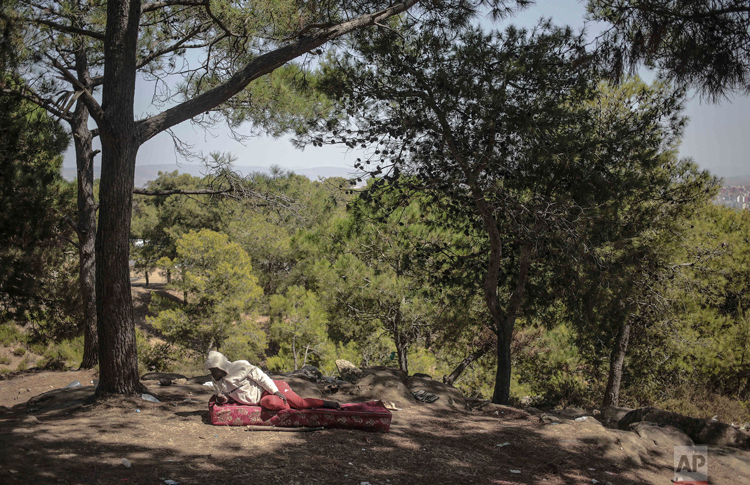 Sub-Saharan migrant takes shelter in a forest near Masnana, Sept. 5, 2018, on the outskirts of Tangier, Morocco. (AP Photo/Mosa'ab Elshamy)