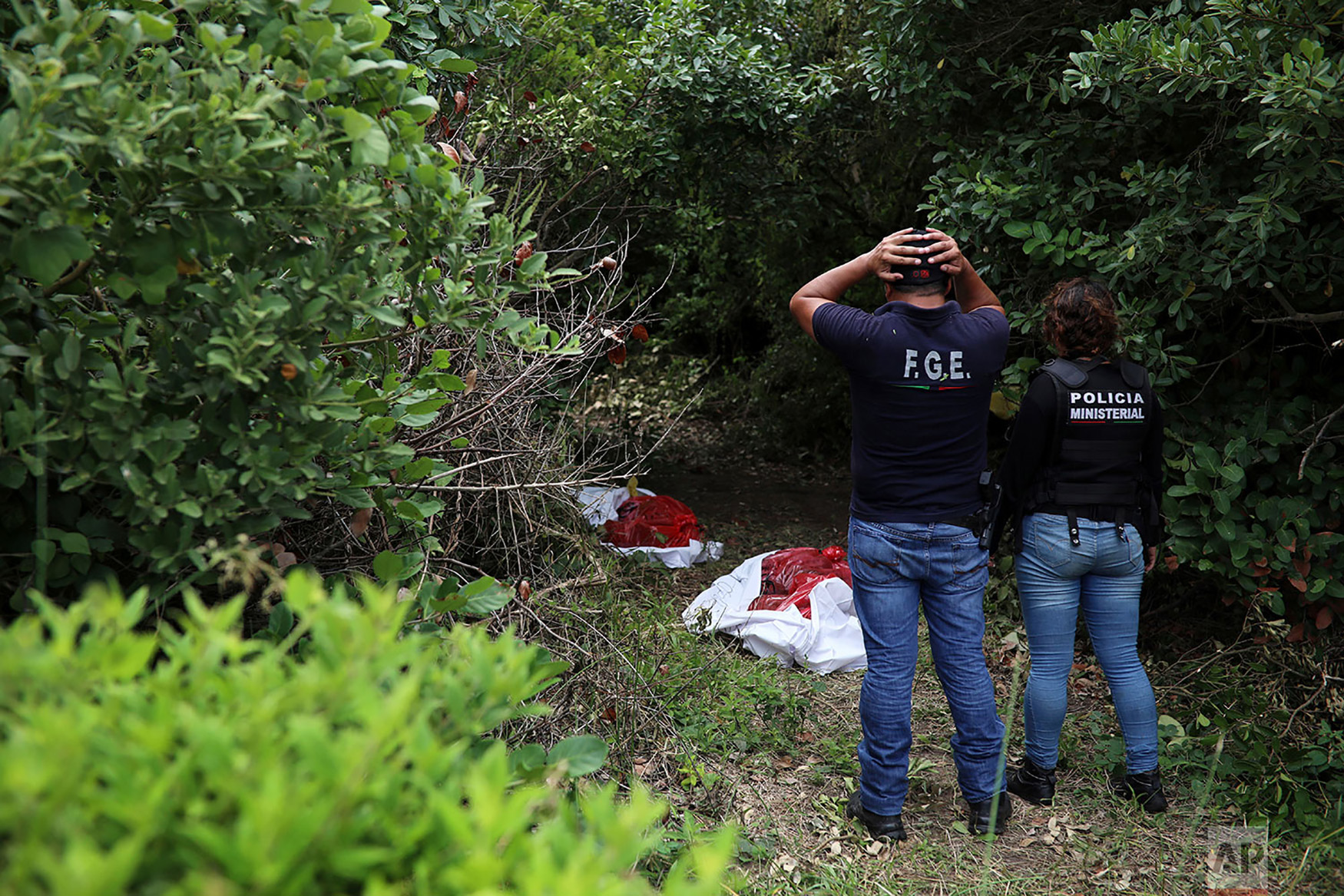 Investigators look at human remains placed in red evidence bags, dug from a clandestine grave site in Arbolillo, Veracruz state, Mexico, Sept. 7, 2018. One day after authorities in the Mexican state of Veracruz announced the discovery of at least 166 skulls in mass graves, journalists who arrived at the site Friday discovered it was the same location where authorities said they had found 47 bodies the previous year. (AP Photo/Felix Marquez)