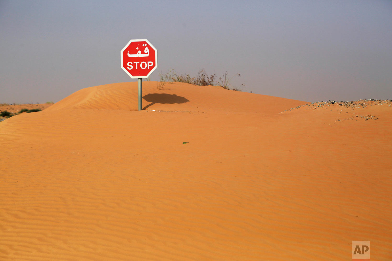 A sand drift partially covers a stop sign in the desert in Umm Al Quwain, United Arab Emirates, Saturday, Oct. 6, 2018. (AP Photo/Jon Gambrell)