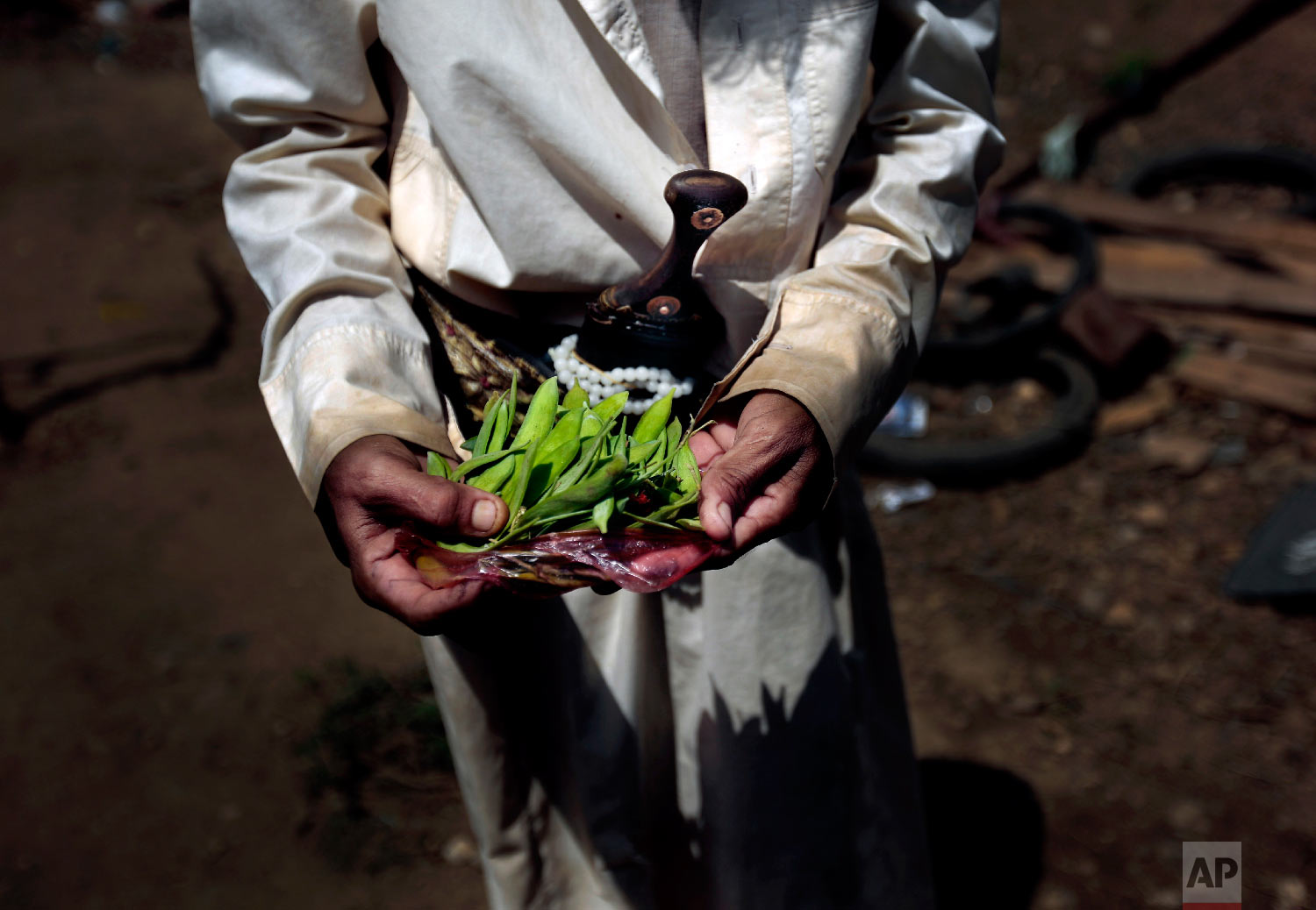 A man holds Halas before cooking for his children, a climbing vine of green leaves, in Aslam, Hajjah, Yemen. (AP Photo/Hani Mohammed)