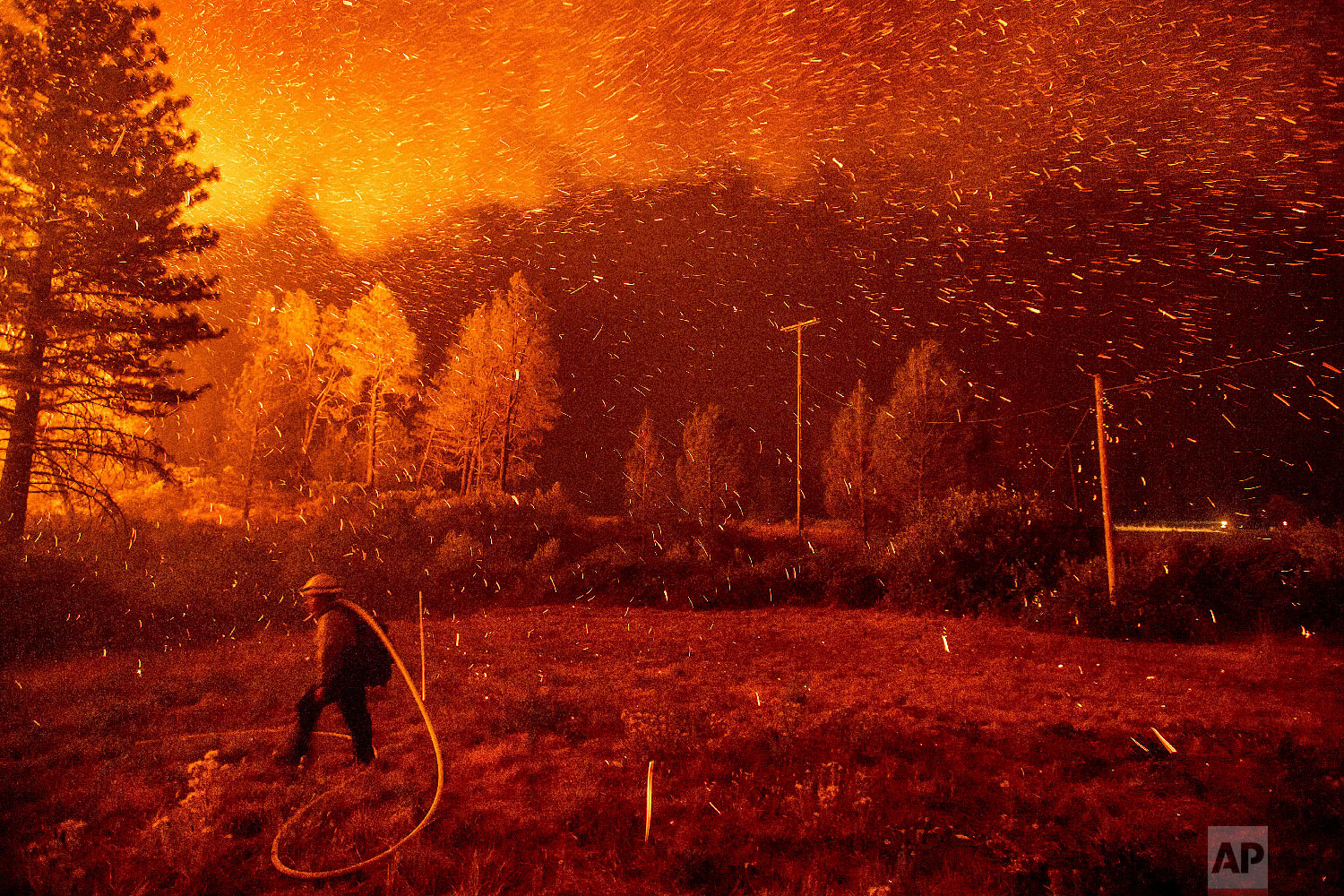 Embers fly above a firefighter hustling to control a backfire as the Delta Fire burns in the California's Shasta-Trinity National Forest on Sept. 6, 2018. (AP Photo/Noah Berger)