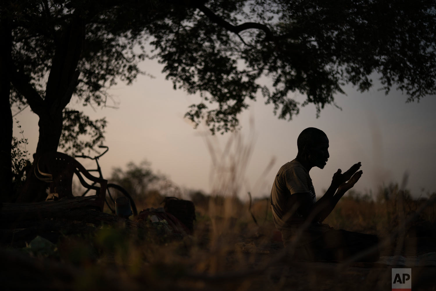 Cheikh Fofana prays under a tree after working in a peanut field, as the sun sets on Nov. 25, 2018, in Goudiry, Senegal. (AP Photo/Felipe Dana)