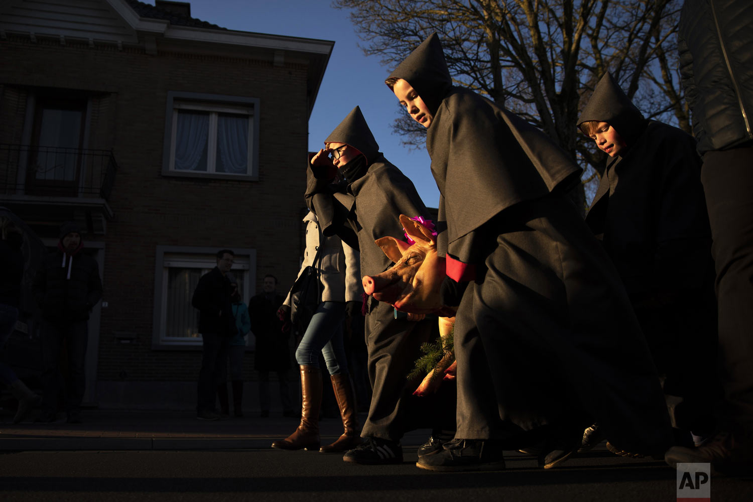 Hooded youths carry a slaughtered pig to a church during Saint Anthony celebrations in the village of Ingooigem, Belgium, on Sunday, Jan. 20, 2019. During the local celebration for the patron saint of animals, hooded twelve-year-olds along with other children bring killed hogs and small farm animals in a short procession to the church to celebrate a Mass. After the mass, pigs are sold in a public auction while the offered farm animals are raffled among the people. (AP Photo/Francisco Seco)