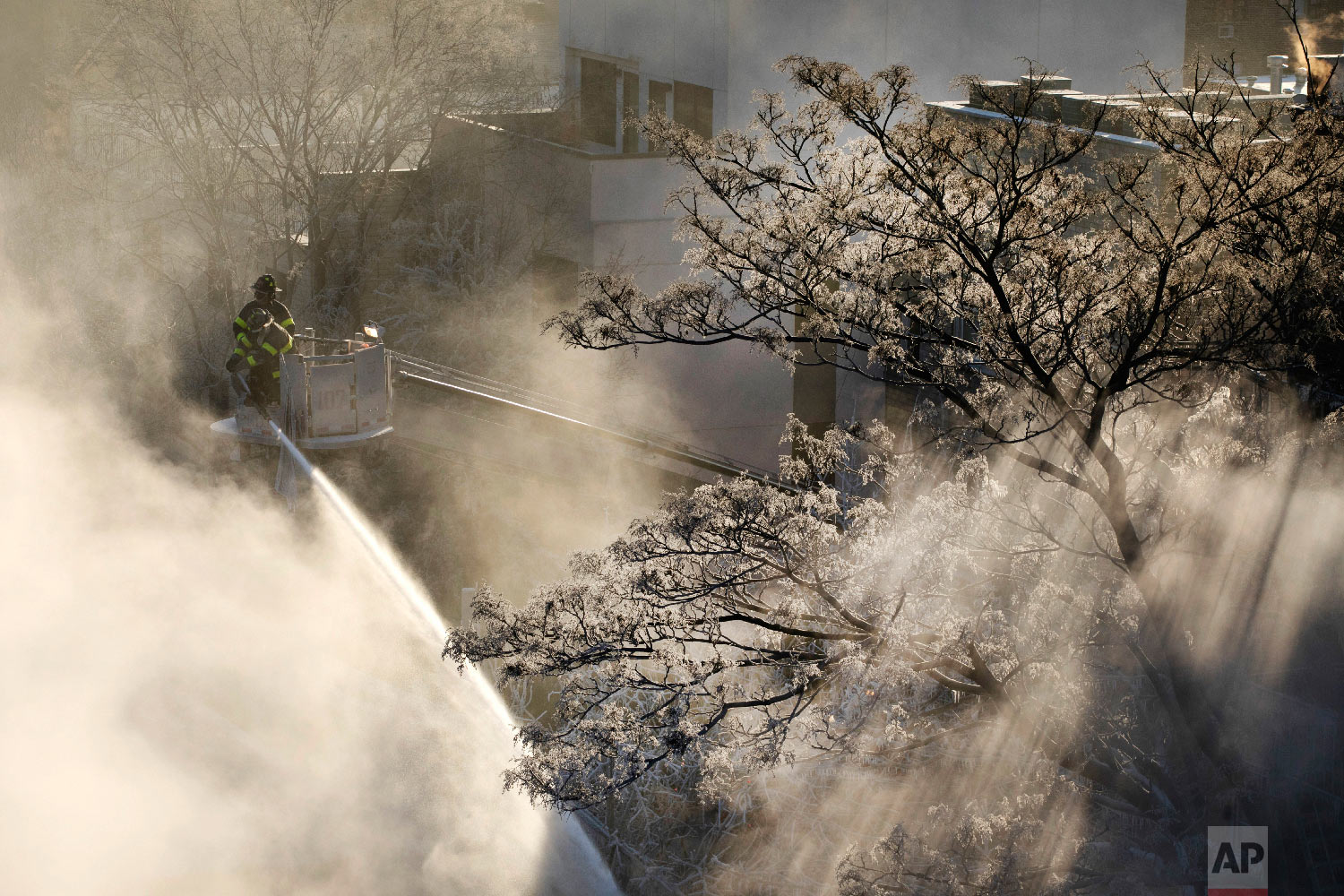 Ice forms on tree branches as New York firefighters battle a blaze in a commercial building in the Bedford Stuyvesant neighborhood of Brooklyn, Thursday, Jan. 31, 2019 in New York. (AP Photo/Mark Lennihan)