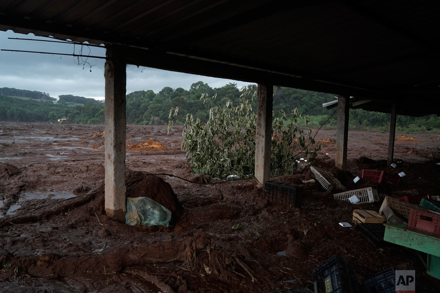 Mud covers a produce market after a Vale dam collapsed near Brumadinho, Brazil, Jan. 26, 2019. (AP Photo/Leo Correa)