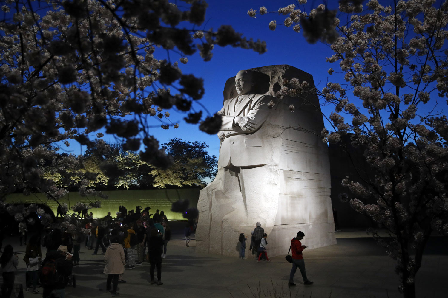 Cherry blossom trees surround the Martin Luther King, Jr., Memorial at dusk, Wednesday, April 3, 2019, in Washington. (AP Photo/Patrick Semansky)