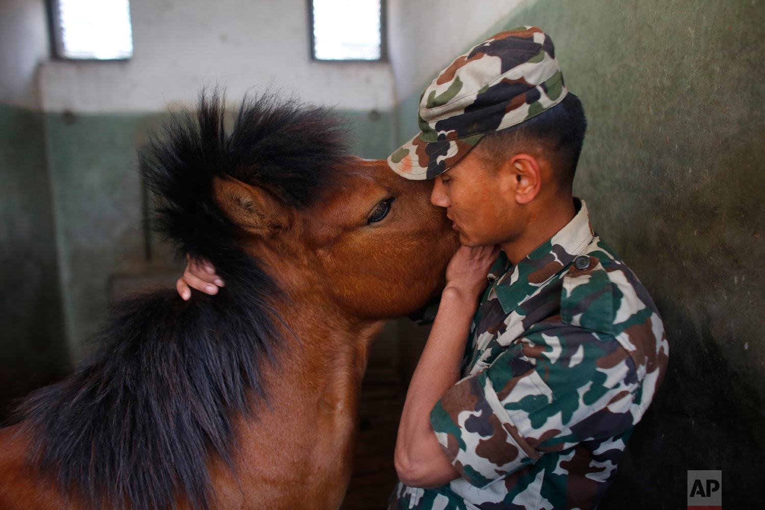 A Nepalese army soldier bonds with a horse at the Nepal Cavalry stable before the Ghode Jatra festival on April 3, 2019, in Kathmandu, Nepal. (AP Photo/Niranjan Shrestha)