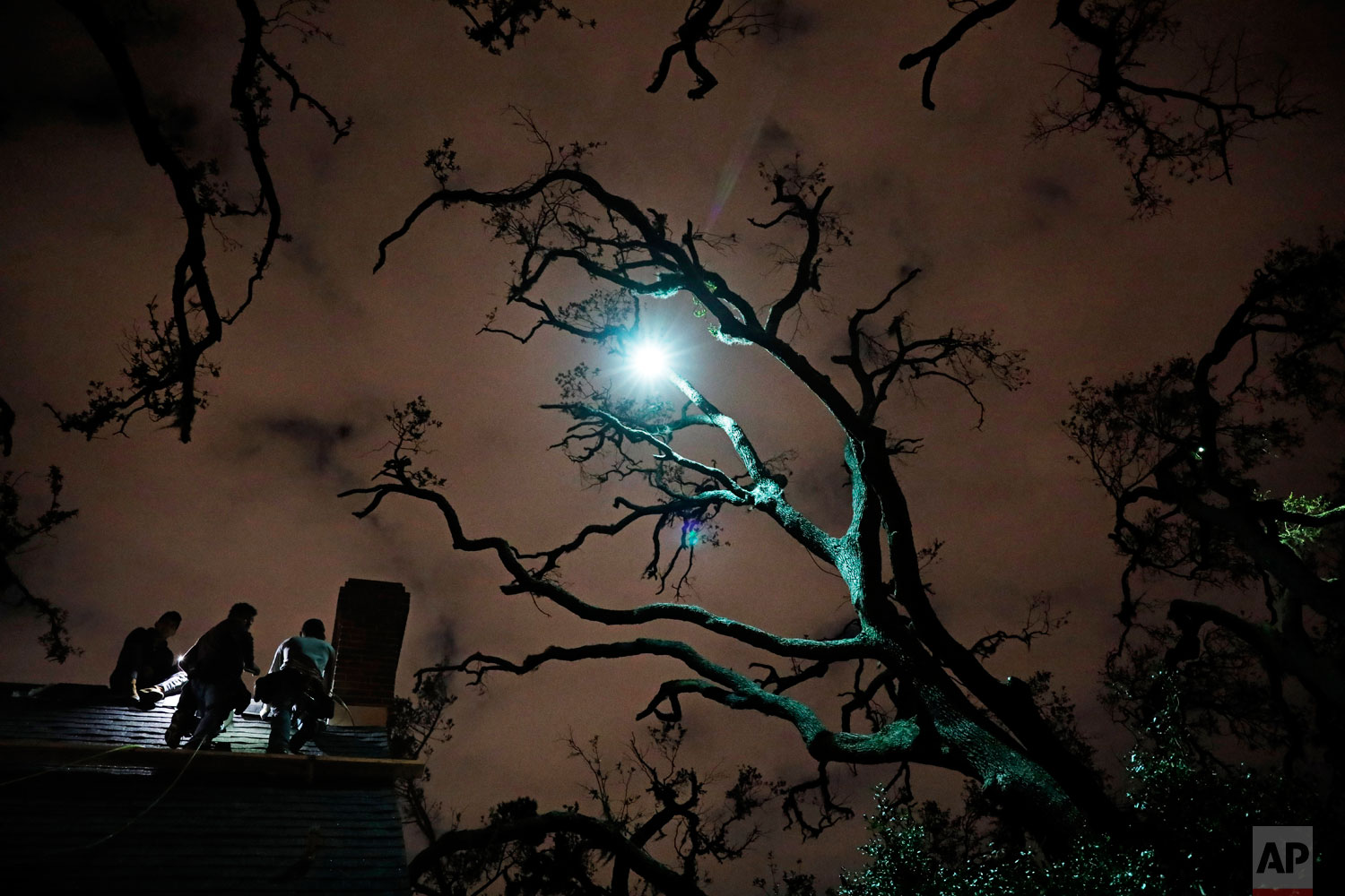 Workers repair a roof at night under trees left bare by Hurricane Michael in Panama City, Fla, Tuesday, Jan. 22, 2019. Some residents have been able to make their homes livable again with cosmetic repairs. Others simply left town: The county's student population is down 14 percent. For those still considered homeless their options are: move in with relatives, turn hotel rooms into temporary apartments, or get a tent. (AP Photo/David Goldman)