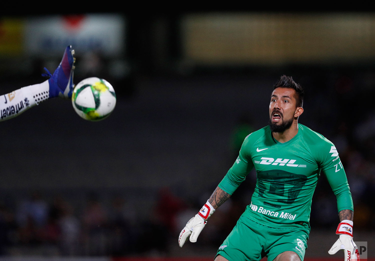 Pumas' goalkeeper Miguel Fraga watches as a scoring attempt by Dorados is intercepted by teammate Alan Mendoza, in their Copa MX quarterfinal match at Olympic University Stadium in Mexico City, Tuesday, March 12, 2019. (AP Photo/Rebecca Blackwell)