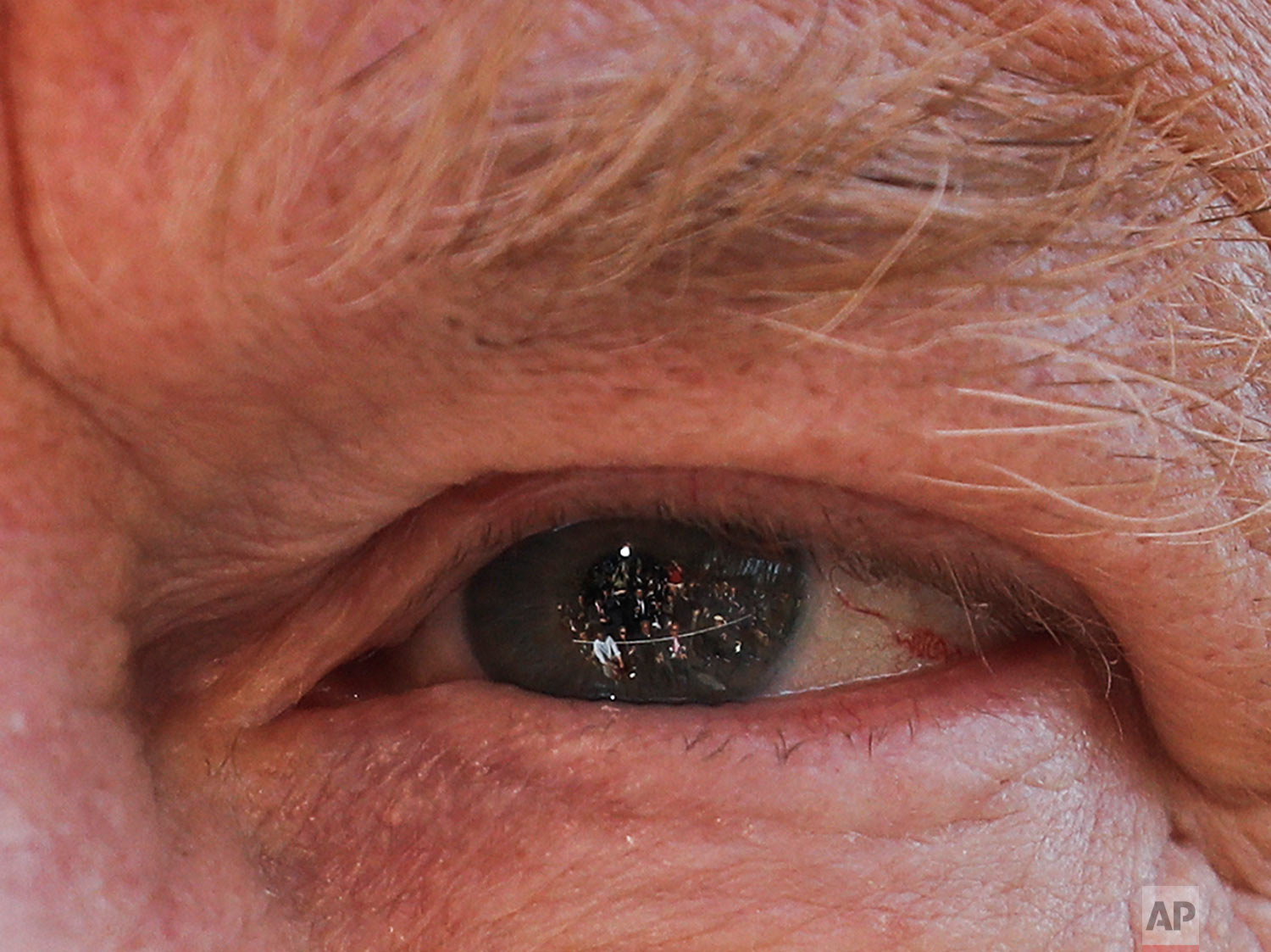 Members of the media are reflected in the eye of President Donald Trump as he answers questions on the South Lawn of the White House in Washington, before boarding Marine One helicopter April 10, 2019. (AP Photo/Pablo Martinez Monsivais)