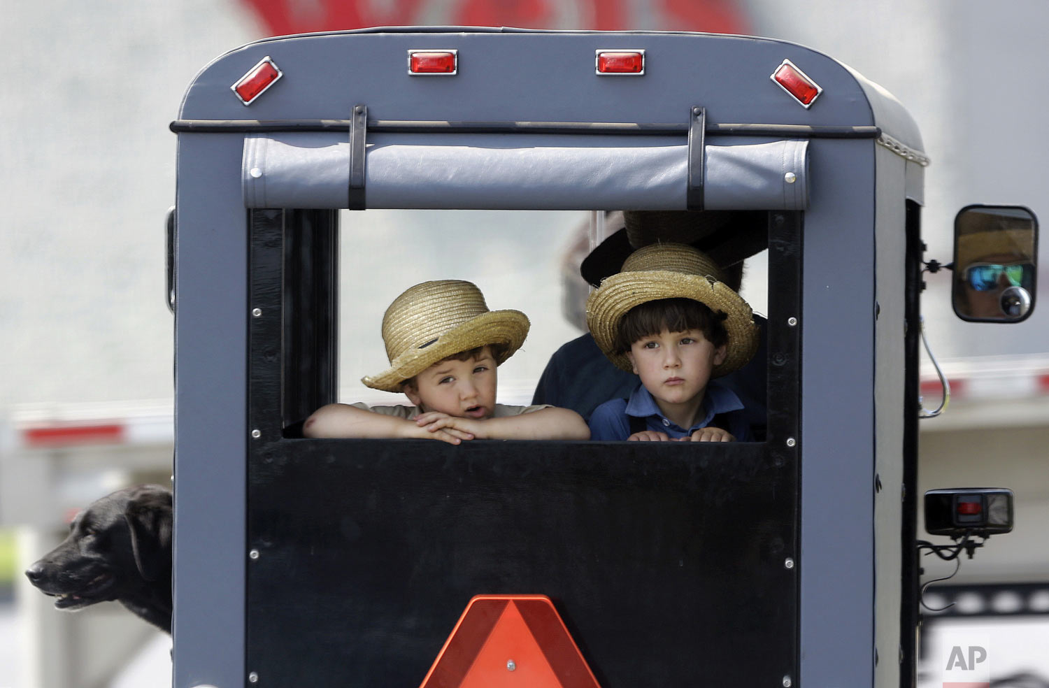 Two boys ride in the back of a horse-drawn buggy stopped at a traffic light, Wednesday, May 29, 2019, in Lancaster County, near Gap, Pa. (AP Photo/Jacqueline Larma)