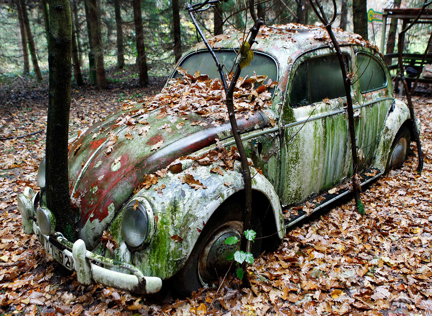 An old Volkswagen Beetle is seen in the garden of Otto Weymann in Fuldatal near Kassel, central Germany, Nov. 9, 2009. (AP Photo/Michael Probst)