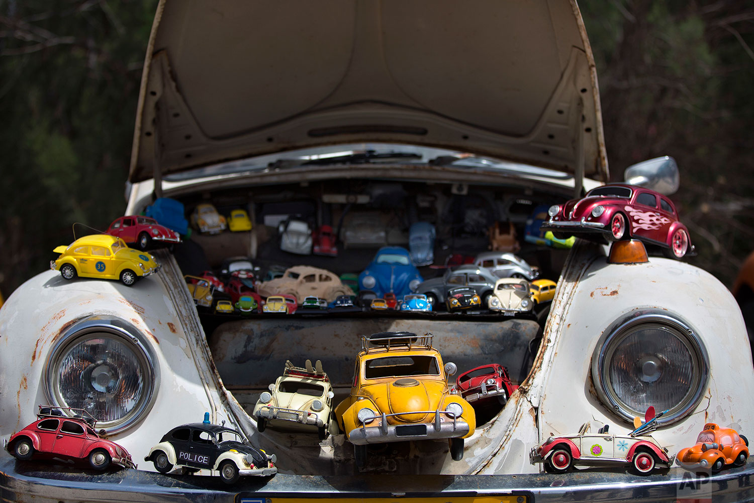 "A collection of VW beetles car toys seen on Volkswagen Beetle displayed during the annual gathering of the ""Beetle Club"" in Yakum, central Israel, April 21, 2017. (AP Photo/Oded Balilty)"