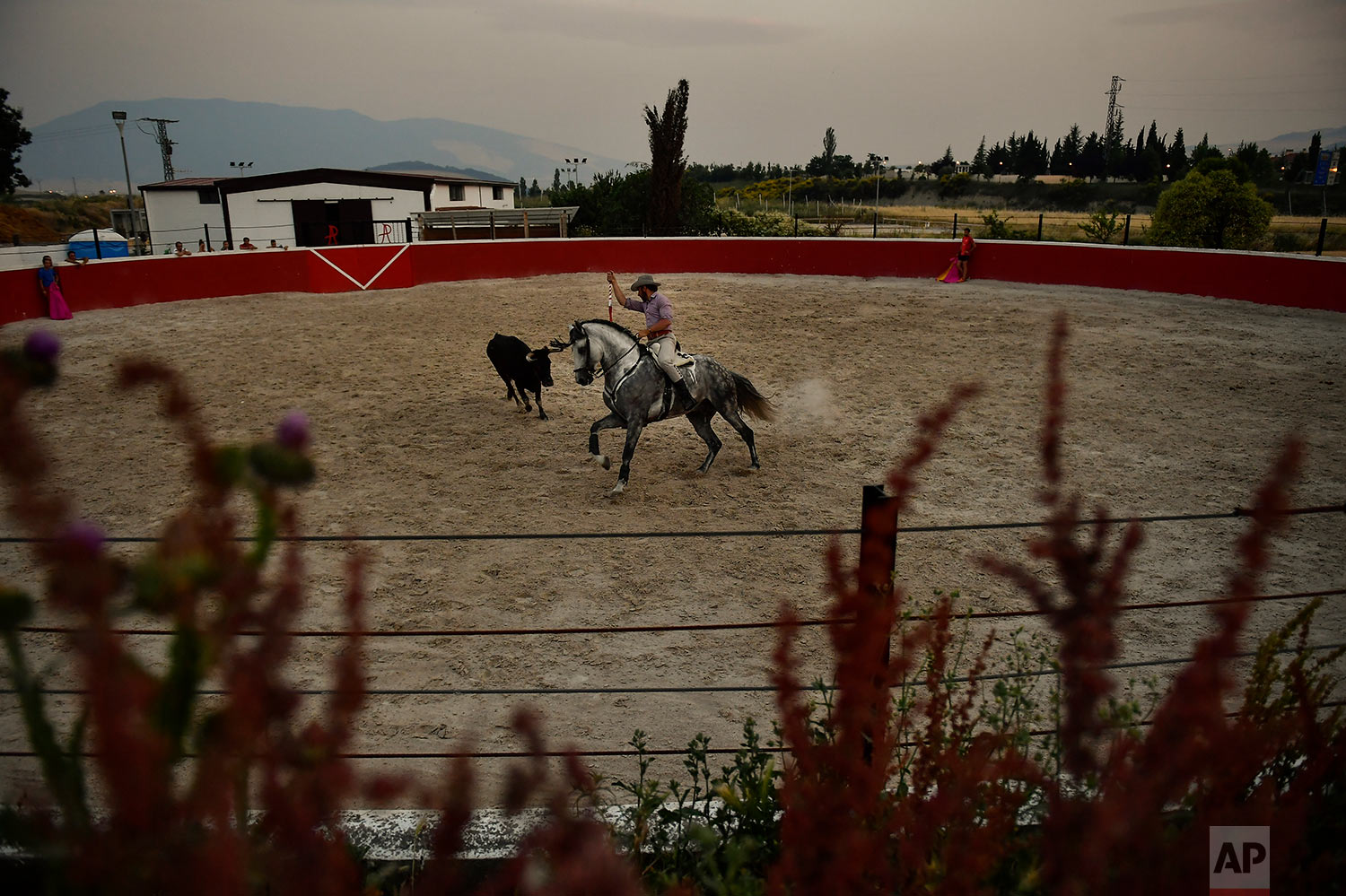 Roberto Armendariz takes part on a training with his horse at his ranch in Noain, northern Spain, June 19, 2019. (AP Photo/Alvaro Barrientos)