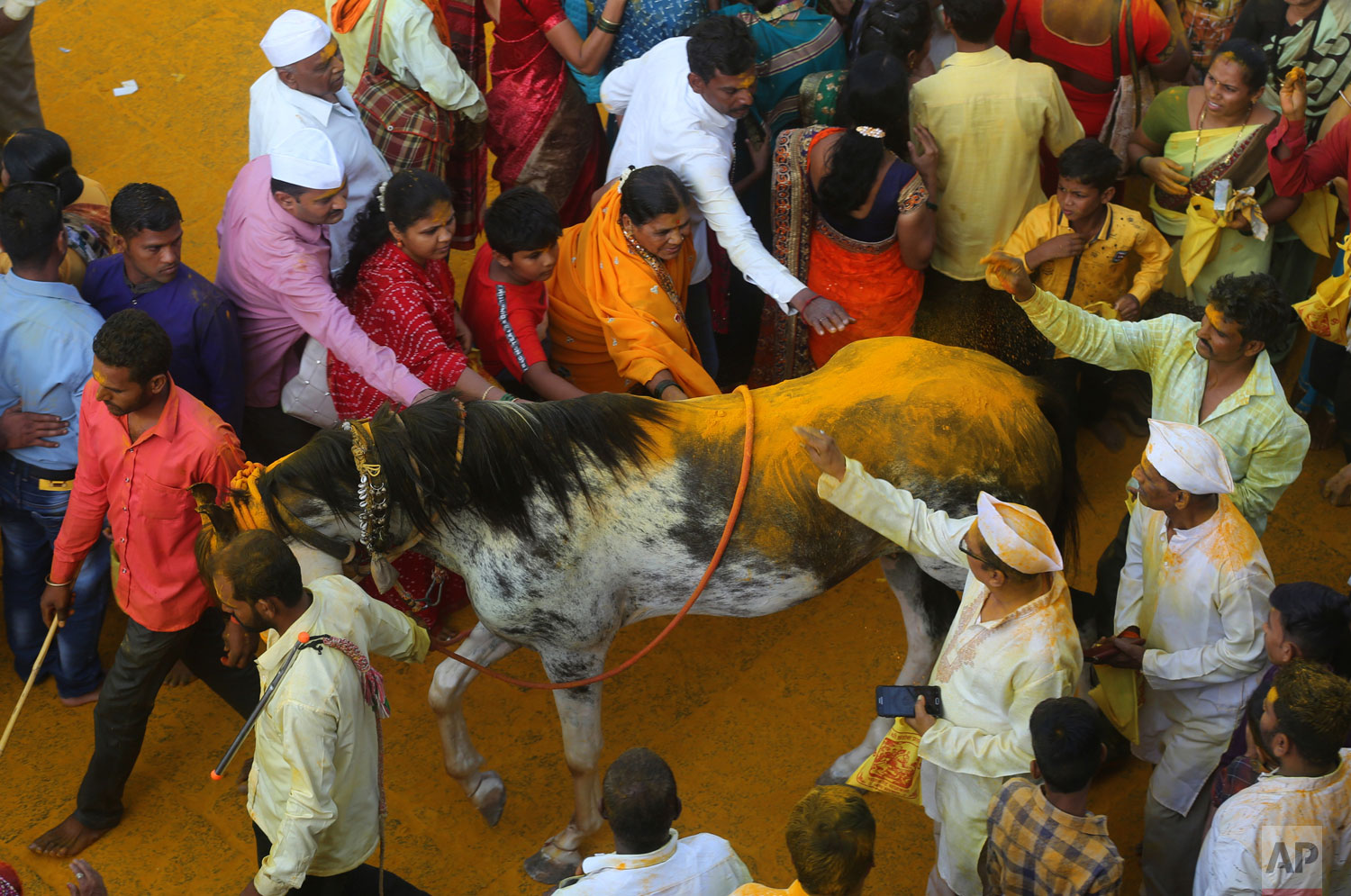 Devotees throw turmeric powder on a holy horse as an offering to the shepherd god Khandoba on 'Somavati  during a procession at the temple of the shepherd god Khandoba on 'Somavati Amavasya' at the Jejuri temple in Pune district, Maharashtra state, India, Monday, June 3, 2019. 'Somavati Amavasya' is the day when a New Moon falls on a Monday.(AP Photo/Rafiq Maqbool)