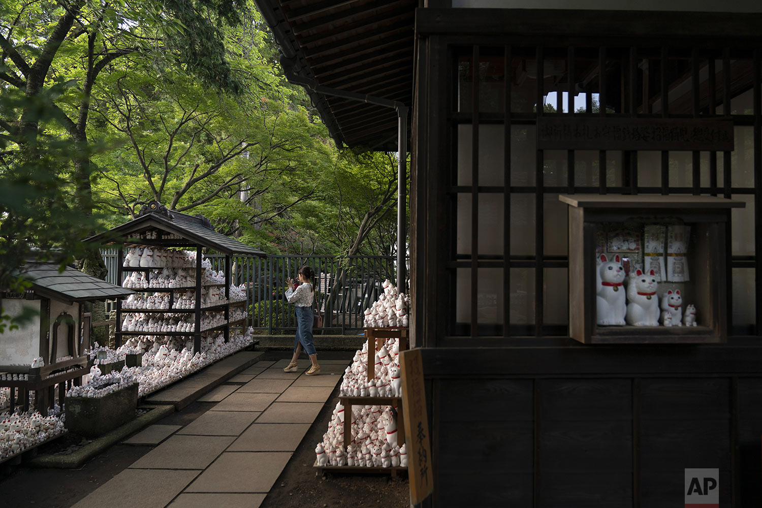 A visitor takes photos of beckoning cat figurines at Gotokuji Temple in Tokyo, Tuesday, June 25, 2019. (AP Photo/Jae C. Hong)
