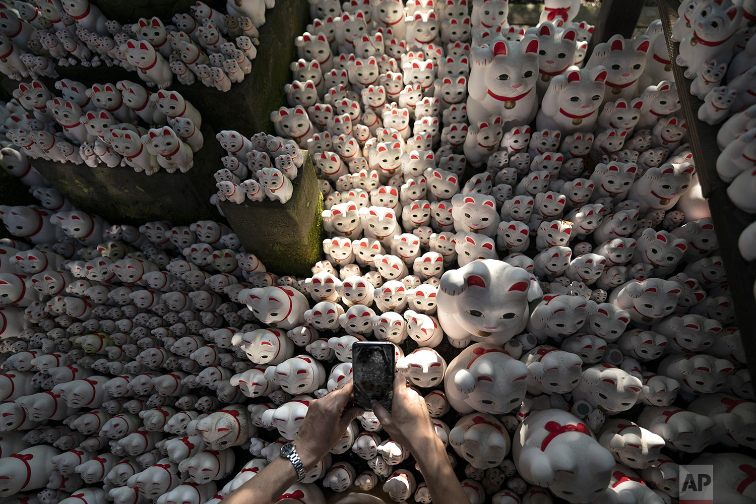 A visitor takes pictures of beckoning cat figurines at Gotokuji Temple in Tokyo, Tuesday, June 25, 2019. (AP Photo/Jae C. Hong)