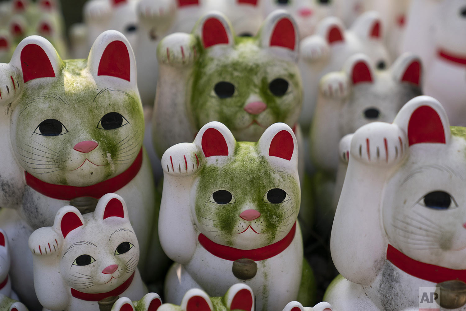 Stained beckoning cat figurines are seen at Gotokuji Temple in Tokyo, Tuesday, June 25, 2019. (AP Photo/Jae C. Hong)