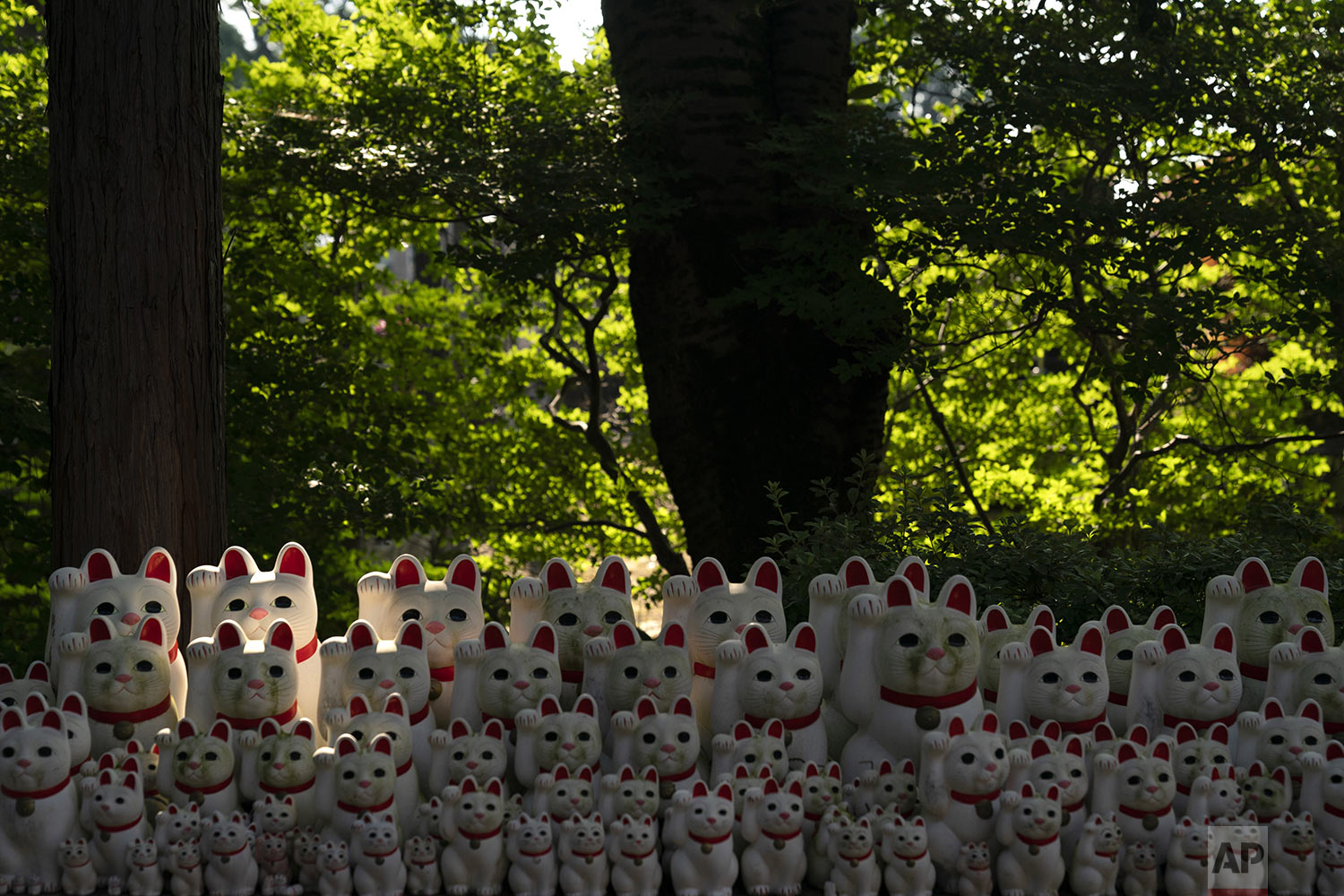 Beckoning cat figurines are on display at Gotokuji Temple in Tokyo, Tuesday, June 25, 2019. (AP Photo/Jae C. Hong)