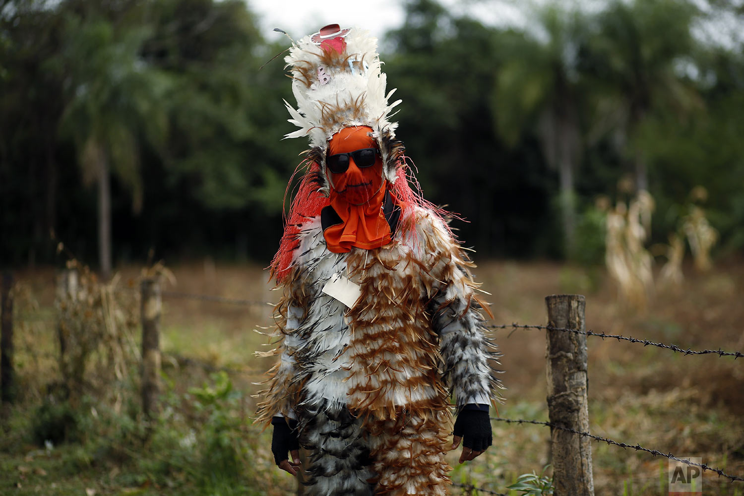 Angel Manuel Balbuena, a 12-year-old student, poses in his feathered costume during the feast of St. Francis Solano, in Emboscada, Paraguay, Wednesday, July 24, 2019. (AP Photo/Jorge Saenz)