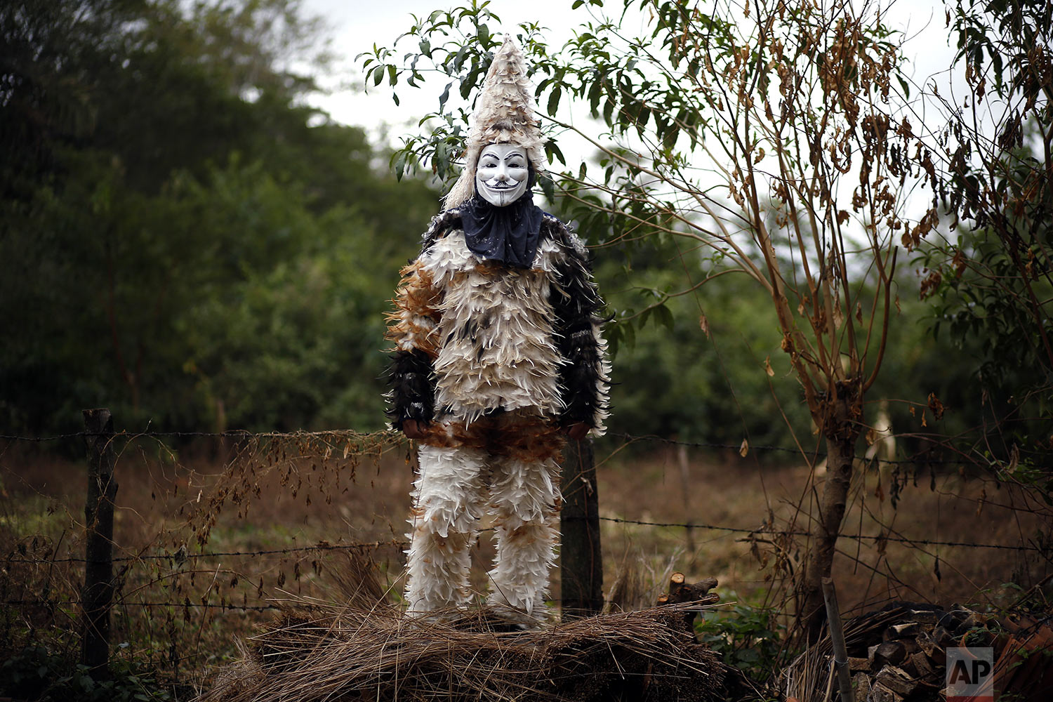 Farmer Nicolas Servin poses for a portrait wearing his feathered costume in honor of St. Francis Solano in Emboscada, Paraguay, Wednesday, July 24, 2019. Servin is thanking the Saint for a good harvest. (AP Photo/Jorge Saenz)