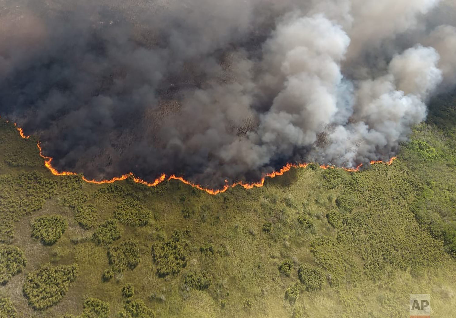 This photo distributed by Mexico's Secretary of Ecology and the Environment (SEMA) in Quintana Roo state shows a fire burning in the Sian Ka'an nature reserve on the Yucatan peninsula, near Felipe Carrillo Puerto, Mexico, Sunday, July 14, 2019. The civil protection coordinator for the state of Quintana Roo said Sunday the fire has already consumed 600 hectares (1,500 acres) of brush and other plants. (SEMA via AP)