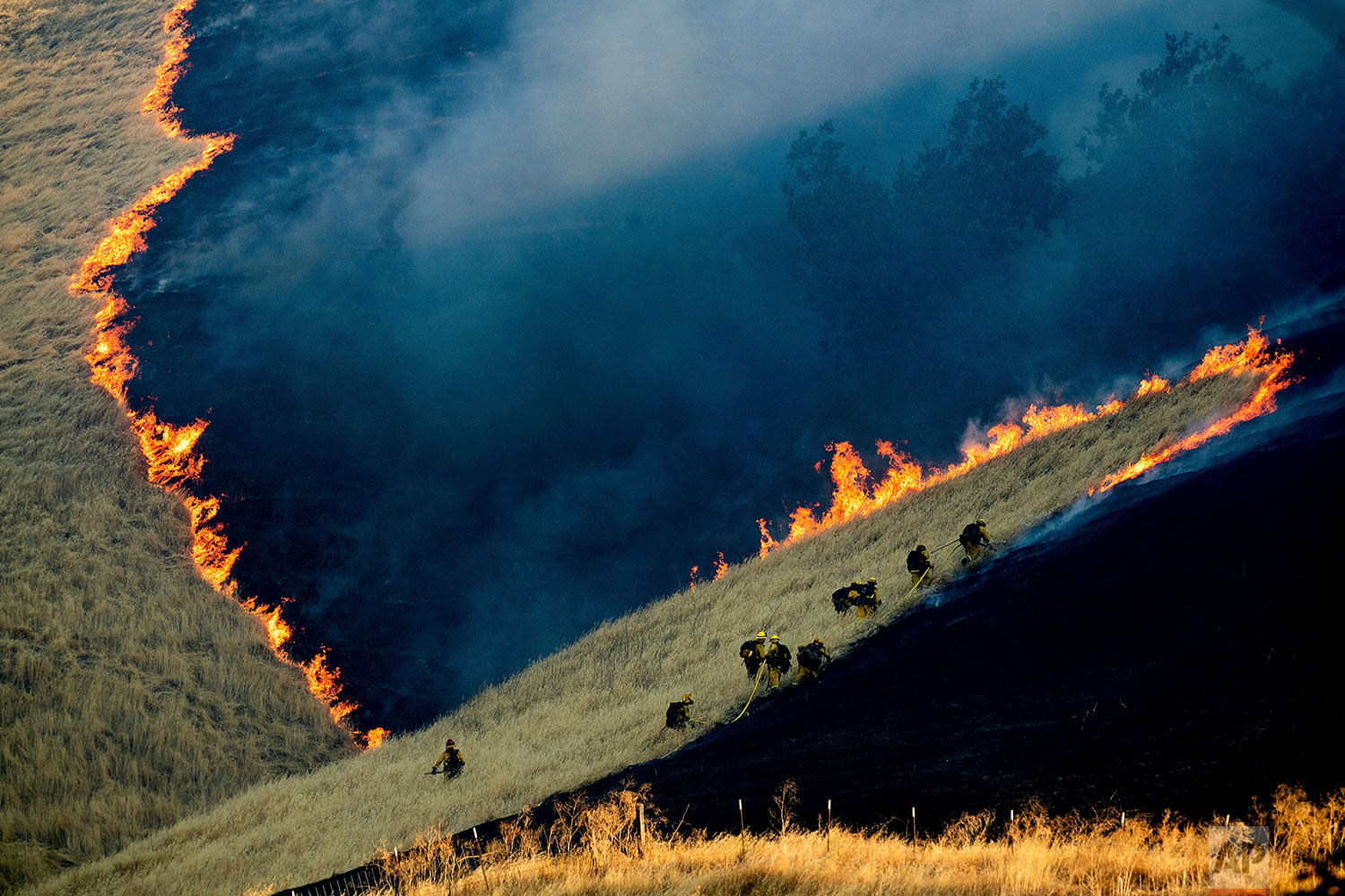 Firefighters battle the Marsh Fire near the town of Brentwood in Contra Costa County, Calif., Saturday, Aug. 3, 2019. (AP Photo/Noah Berger)