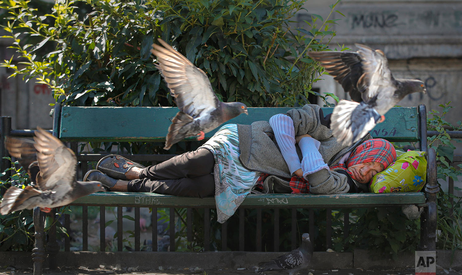 Pigeons fly past a woman sleeping on a bench on a hot day in Bucharest, Romania, Wednesday, Aug. 7, 2019. The national weather authority issued a heat wave warning with temperatures expected to rise above 35 degrees Centigrade (95 Fahrenheit) in the shade in the coming days. (AP Photo/Vadim Ghirda)