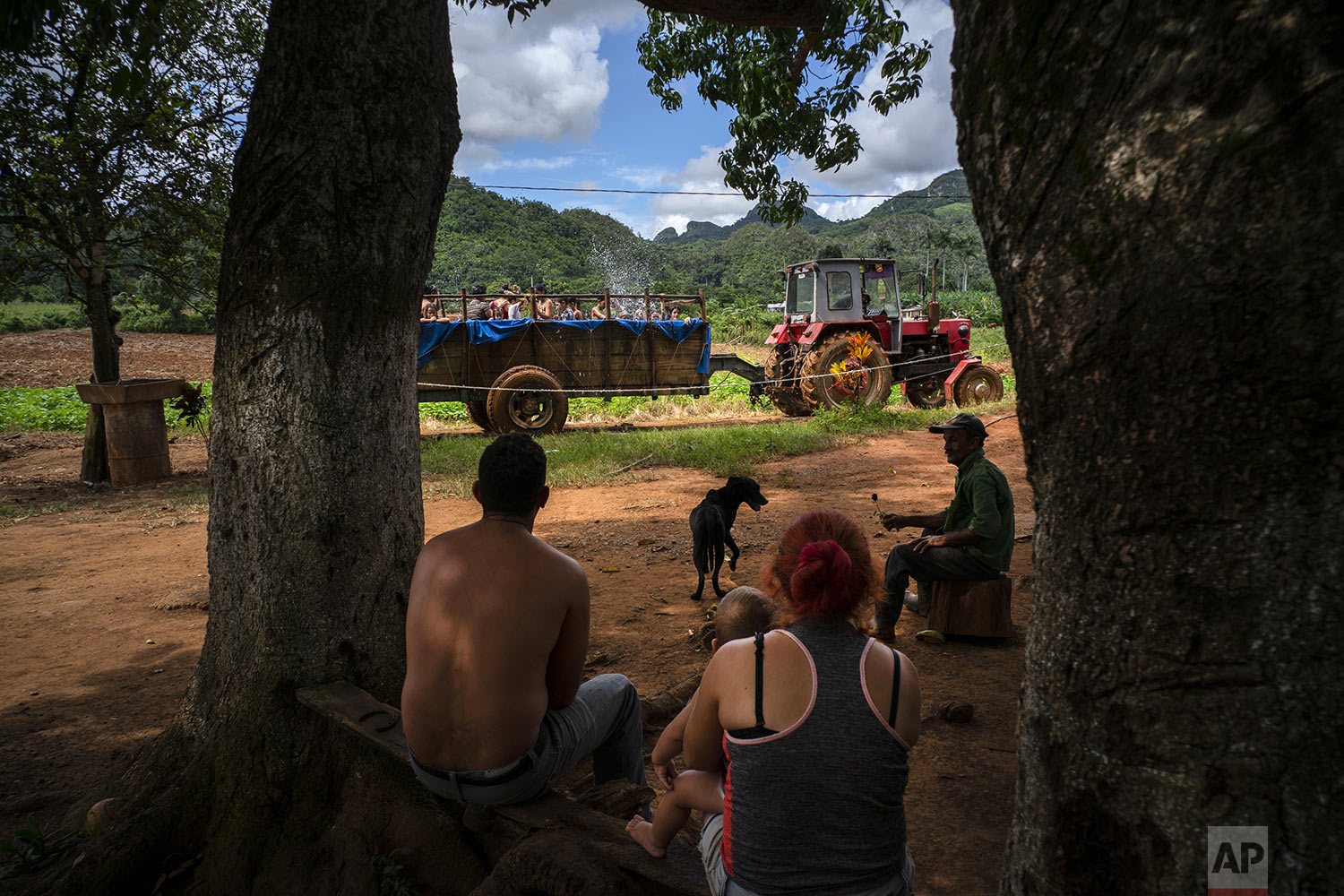 In this Aug. 24, 2019 photo, a family sitting in the shade watches as a tractor that pulls a trailer-turned-pool where children swim, drives past outside their home in the El Infernal neighborhood in San Andres in the province of Pinar del Río, Cuba.  (AP Photo/Ramon Espinosa)